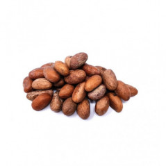 Pack of 3 - Monster Energy