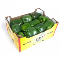 TS Coconut Powder