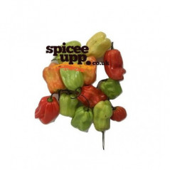 Tilda Everyday Rice 4kg